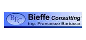 BFC CONSULTING
